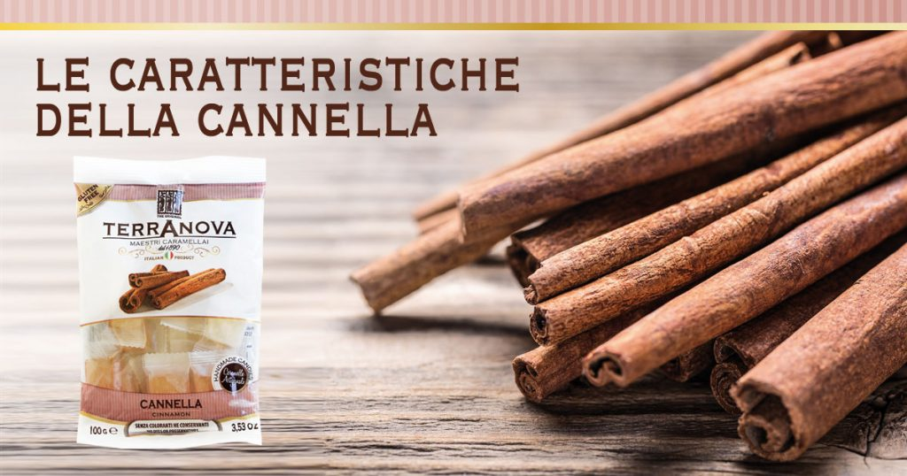 caramelle alla cannella terranova artigianali con stecche di cannella